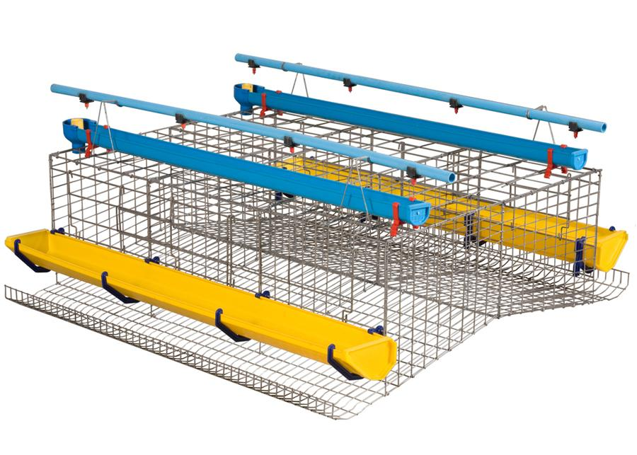 Layer cage set for egg production